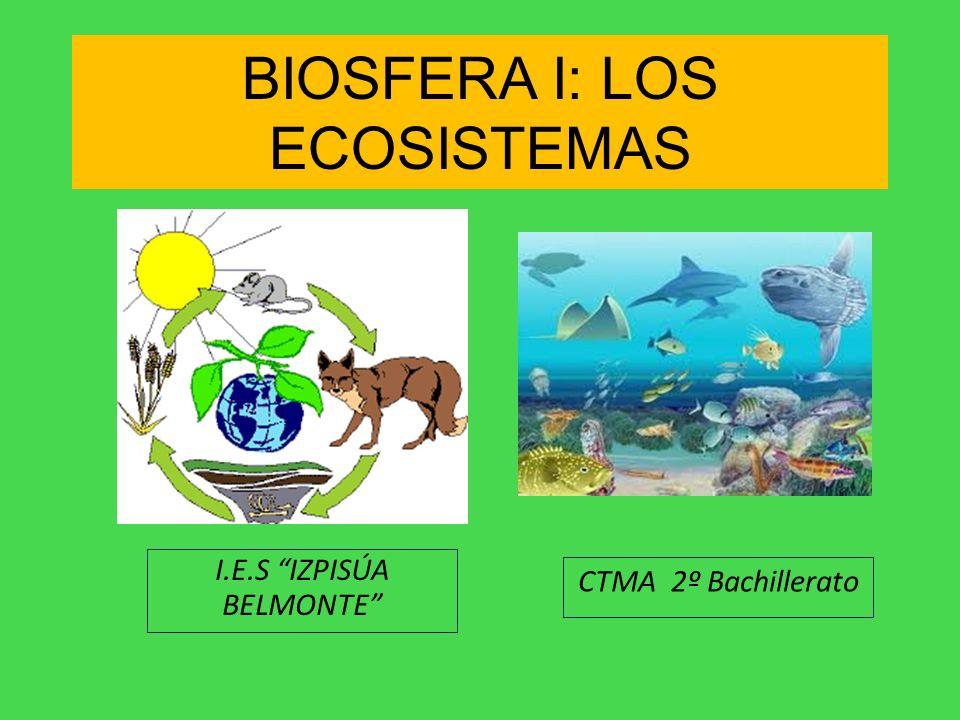 BIOSFERA I: LOS ECOSISTEMAS