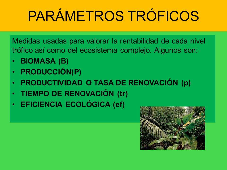 PARÁMETROS TRÓFICOS Medidas usadas para valorar la rentabilidad de cada nivel trófico así como del ecosistema complejo. Algunos son: