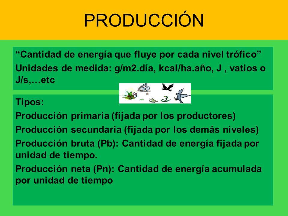 PRODUCCIÓN Cantidad de energía que fluye por cada nivel trófico