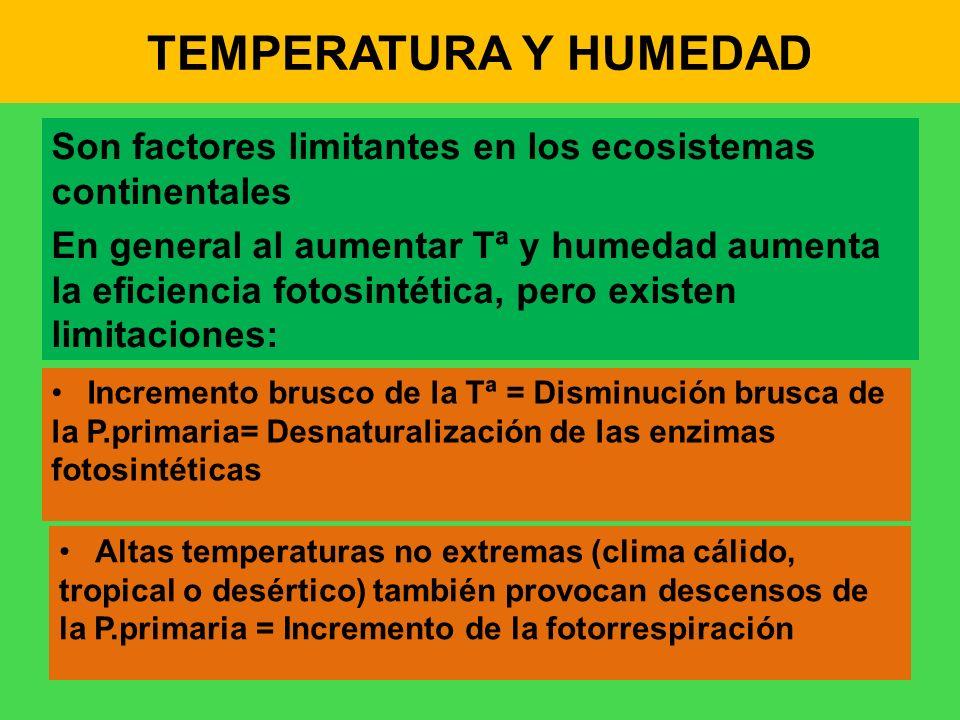 TEMPERATURA Y HUMEDAD Son factores limitantes en los ecosistemas continentales.