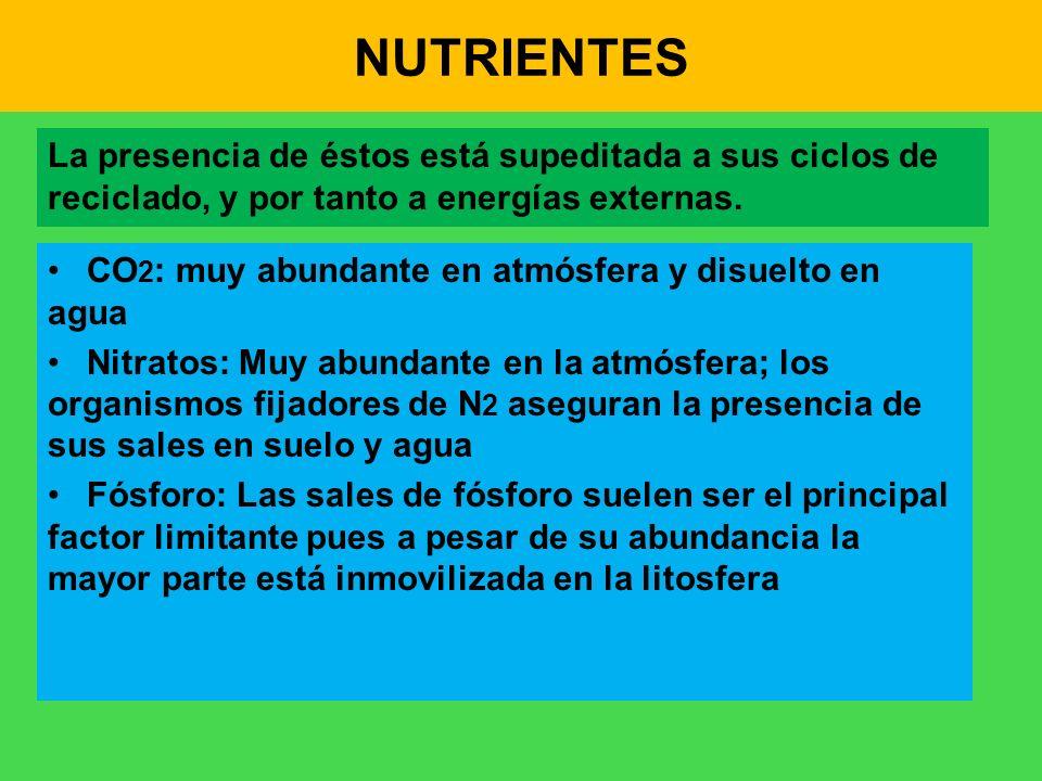 NUTRIENTES La presencia de éstos está supeditada a sus ciclos de reciclado, y por tanto a energías externas.
