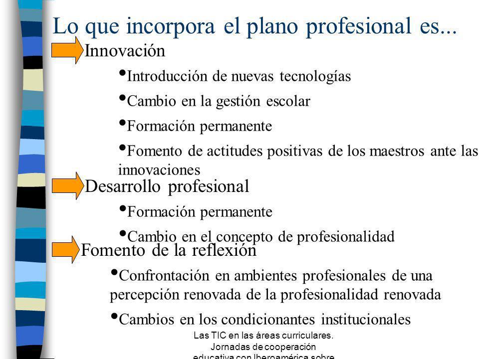 Lo que incorpora el plano profesional es...