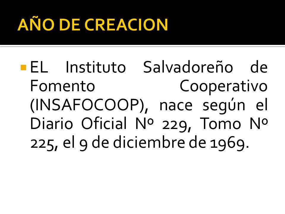 AÑO DE CREACION