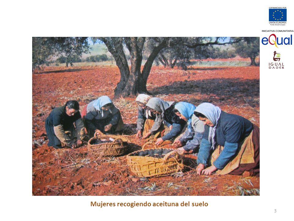 Mujeres recogiendo aceituna del suelo