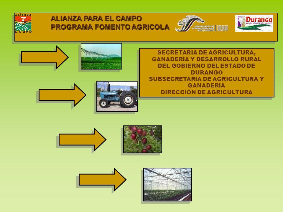 PROGRAMA FOMENTO AGRICOLA