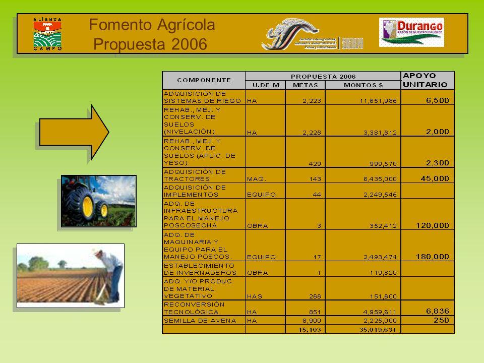 Fomento Agrícola Propuesta 2006