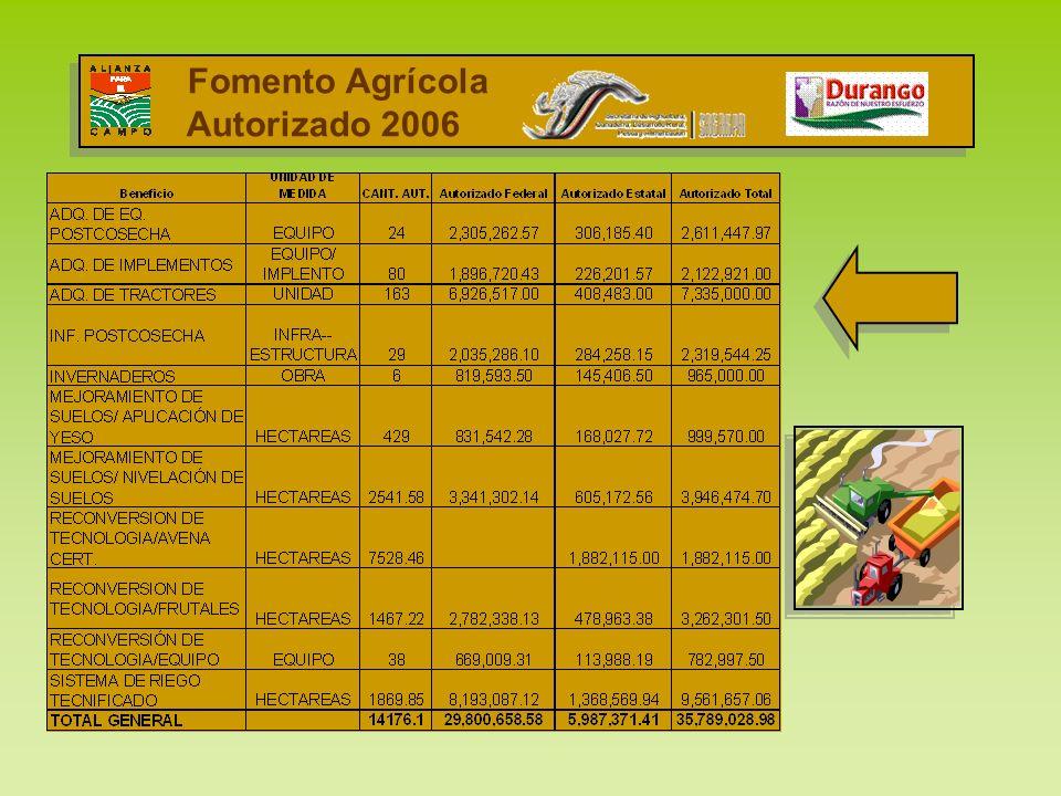 Fomento Agrícola Autorizado 2006