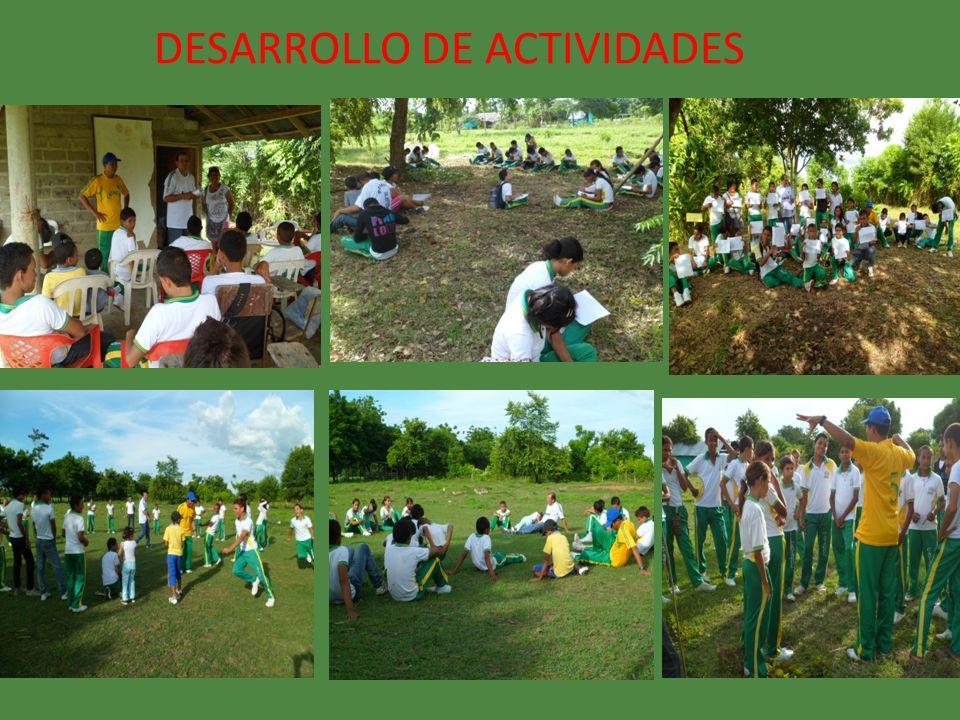 DESARROLLO DE ACTIVIDADES