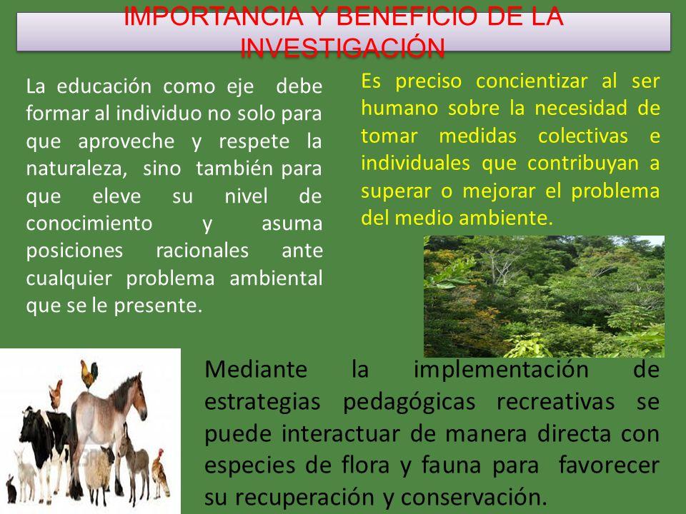 IMPORTANCIA Y BENEFICIO DE LA INVESTIGACIÓN