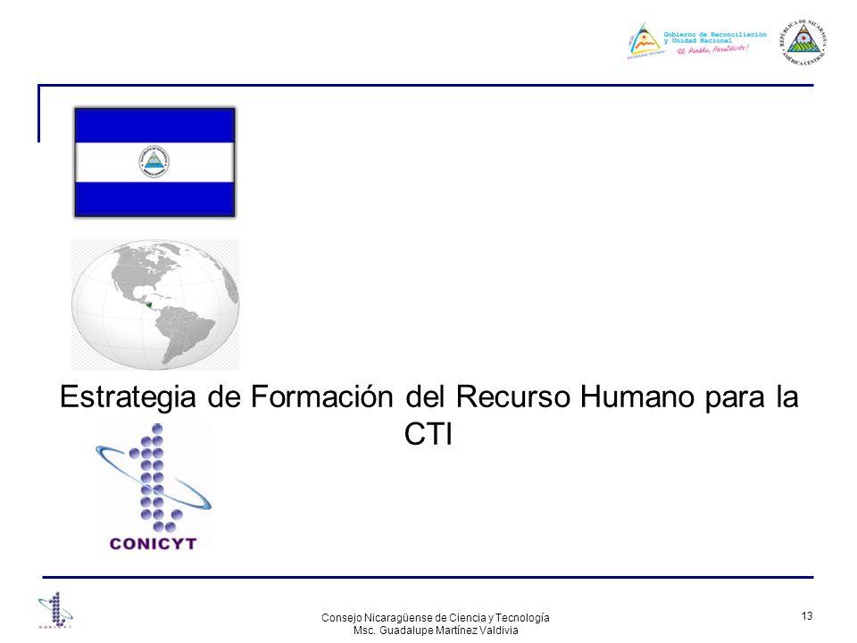 Estrategia de Formación del Recurso Humano para la CTI