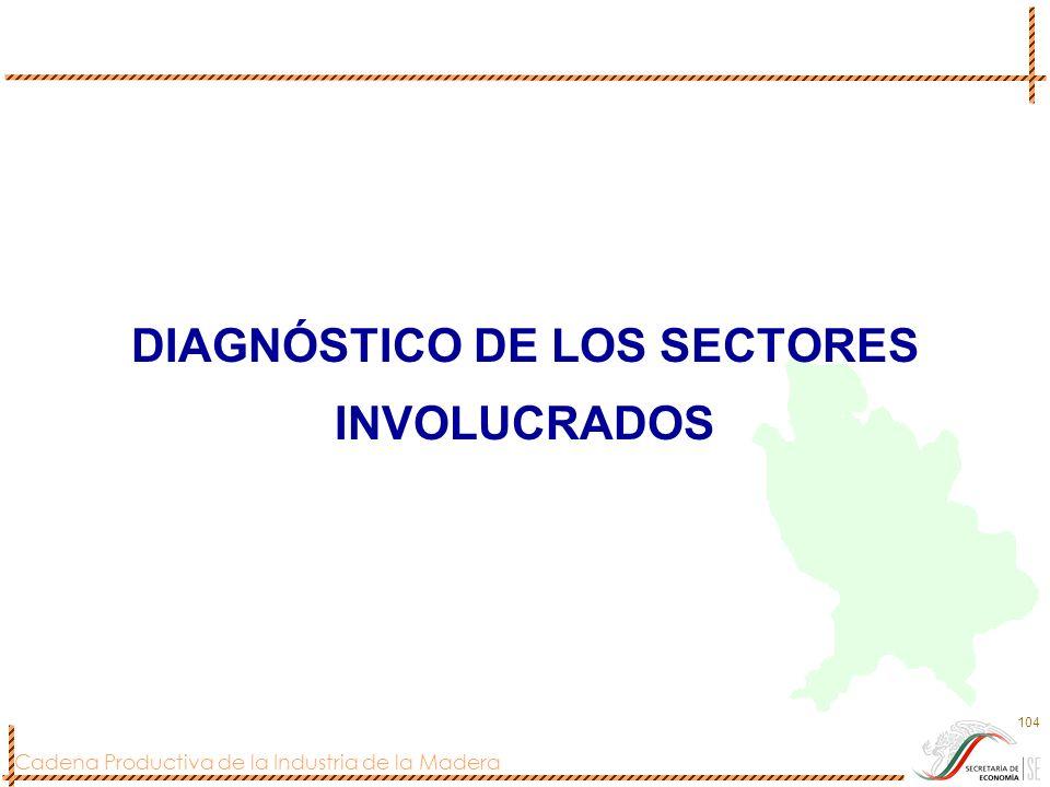 DIAGNÓSTICO DE LOS SECTORES INVOLUCRADOS