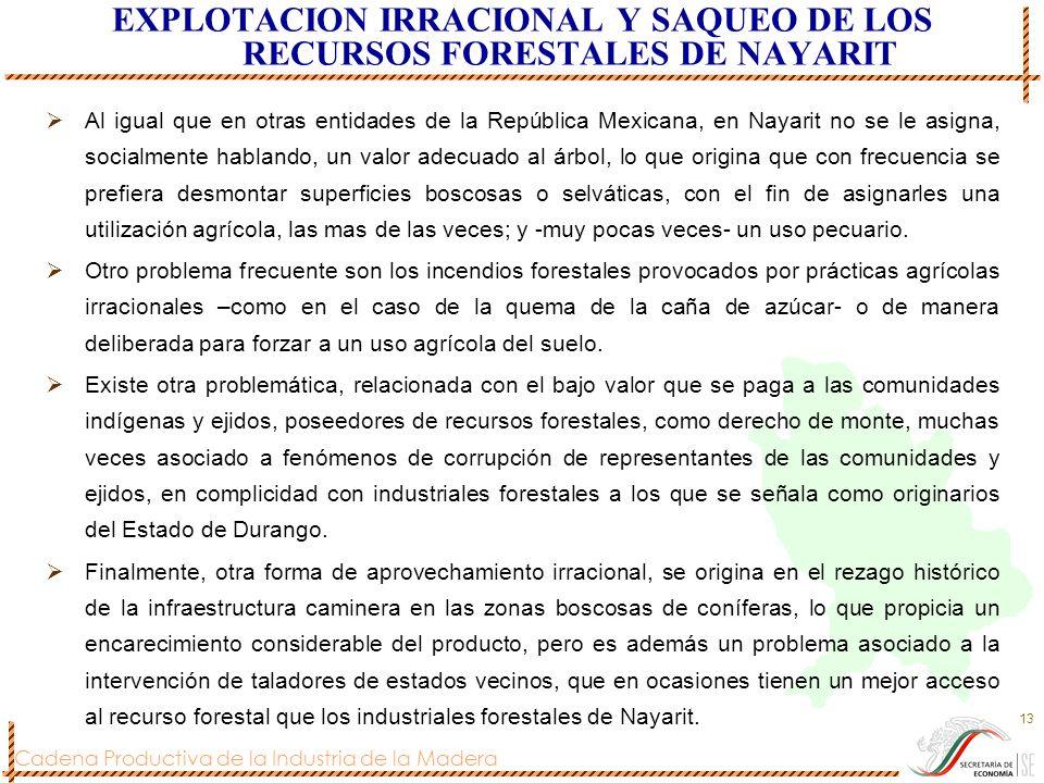 EXPLOTACION IRRACIONAL Y SAQUEO DE LOS RECURSOS FORESTALES DE NAYARIT