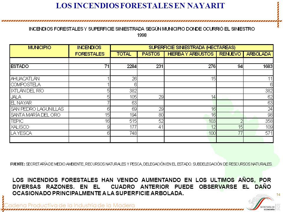 LOS INCENDIOS FORESTALES EN NAYARIT
