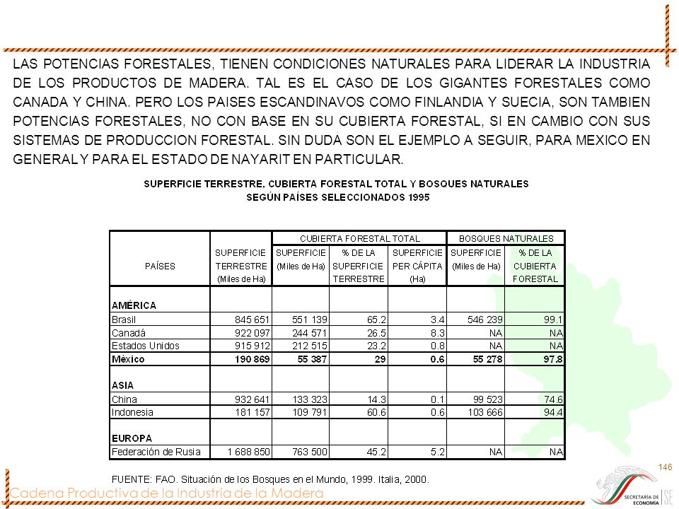 LAS POTENCIAS FORESTALES, TIENEN CONDICIONES NATURALES PARA LIDERAR LA INDUSTRIA DE LOS PRODUCTOS DE MADERA.