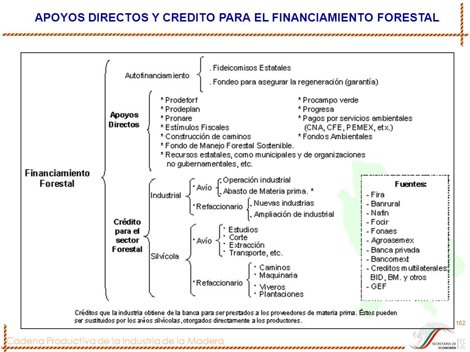 APOYOS DIRECTOS Y CREDITO PARA EL FINANCIAMIENTO FORESTAL