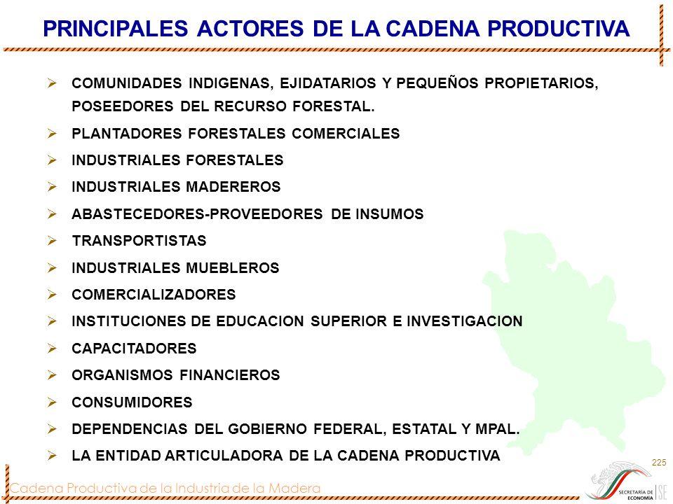 PRINCIPALES ACTORES DE LA CADENA PRODUCTIVA
