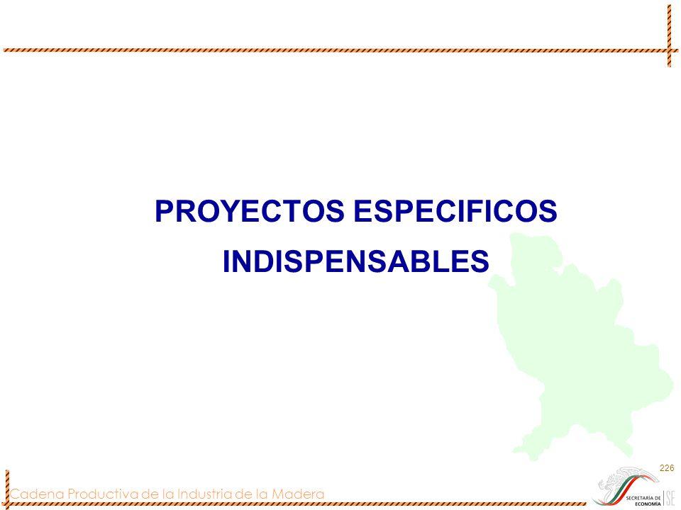 PROYECTOS ESPECIFICOS INDISPENSABLES