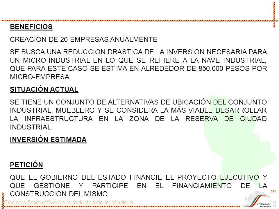 BENEFICIOS CREACION DE 20 EMPRESAS ANUALMENTE.
