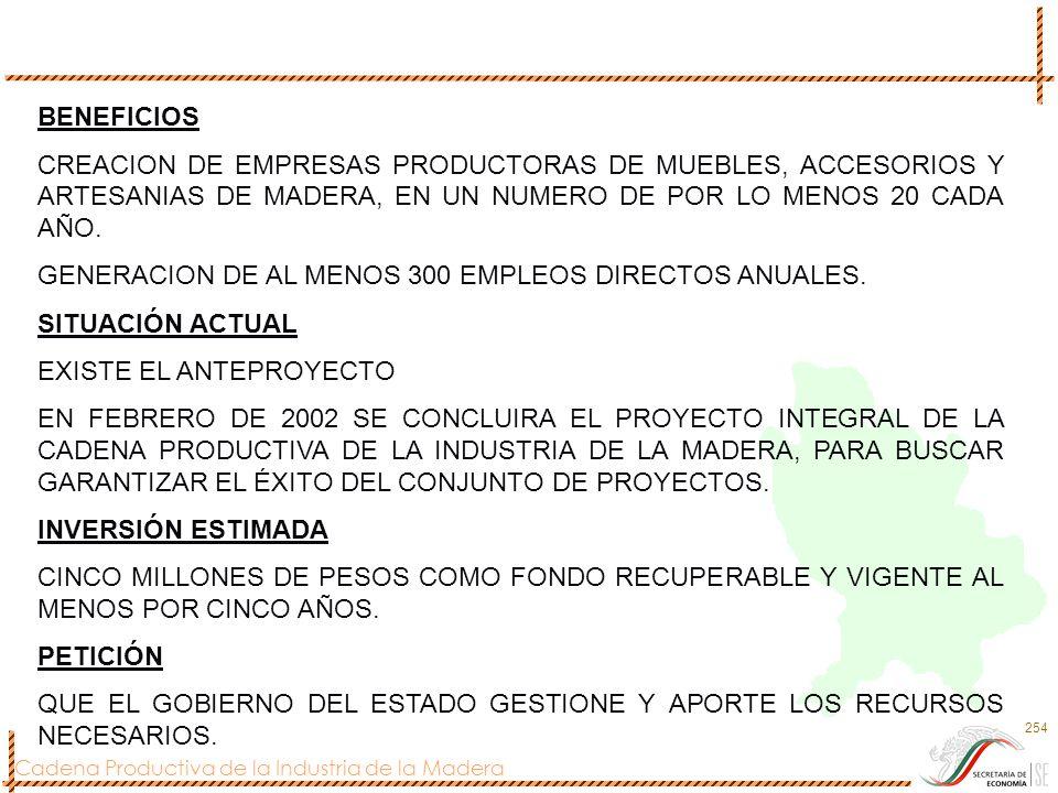 BENEFICIOS CREACION DE EMPRESAS PRODUCTORAS DE MUEBLES, ACCESORIOS Y ARTESANIAS DE MADERA, EN UN NUMERO DE POR LO MENOS 20 CADA AÑO.