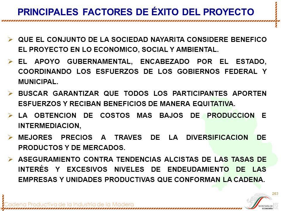 PRINCIPALES FACTORES DE ÉXITO DEL PROYECTO