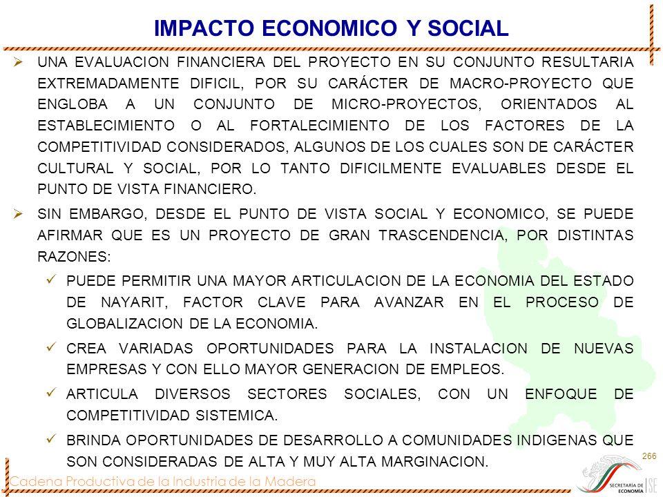 IMPACTO ECONOMICO Y SOCIAL