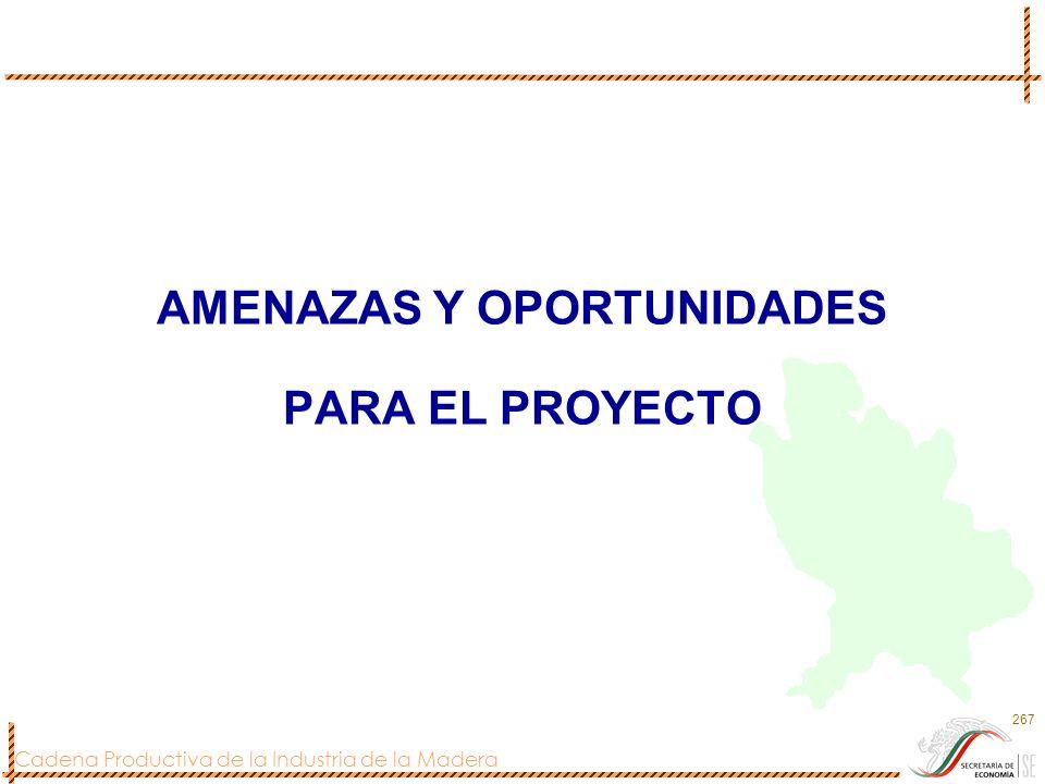 AMENAZAS Y OPORTUNIDADES PARA EL PROYECTO