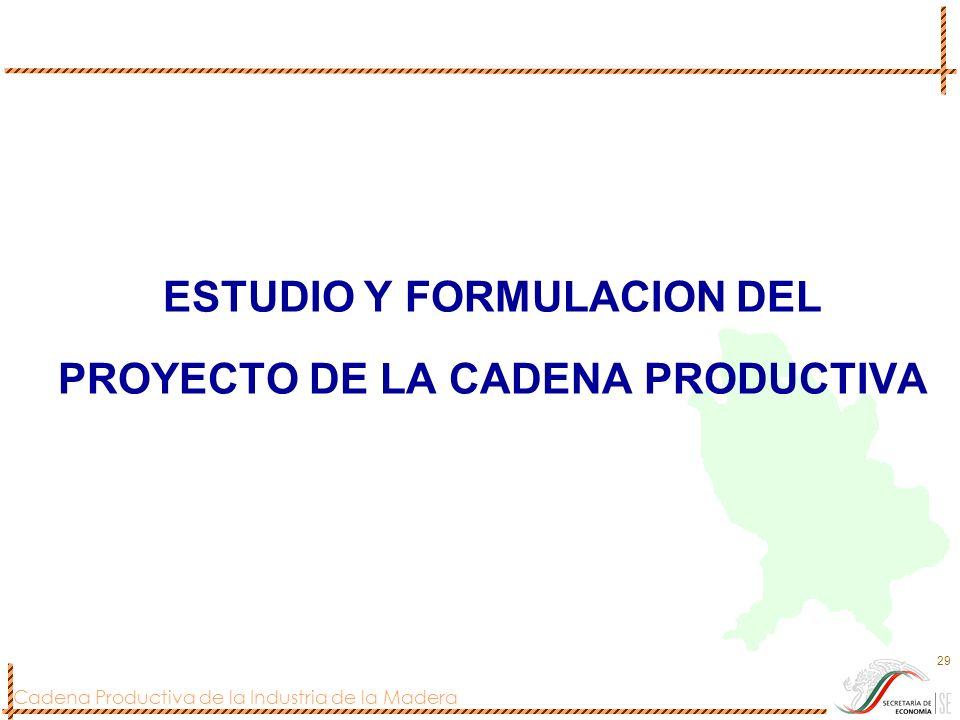 ESTUDIO Y FORMULACION DEL PROYECTO DE LA CADENA PRODUCTIVA