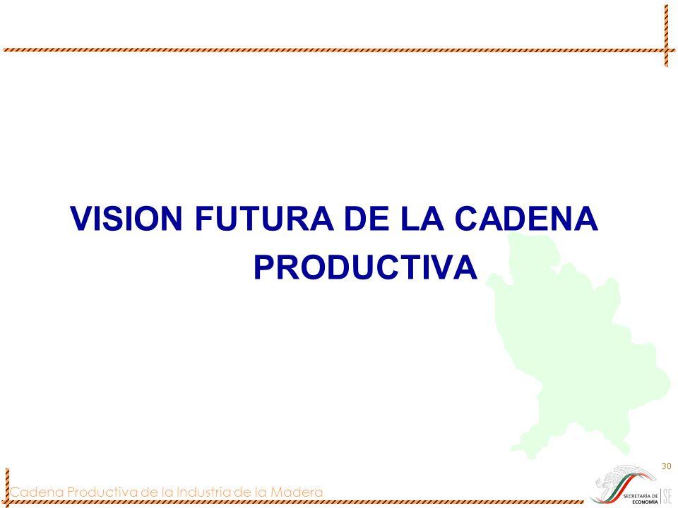VISION FUTURA DE LA CADENA PRODUCTIVA