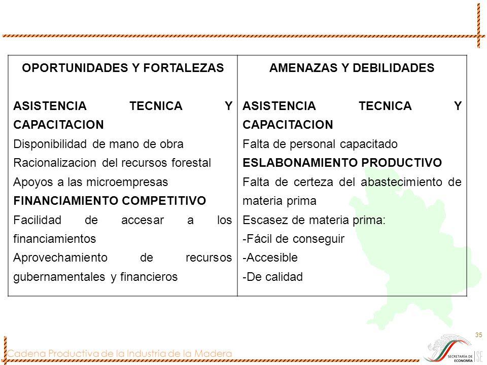 OPORTUNIDADES Y FORTALEZAS AMENAZAS Y DEBILIDADES
