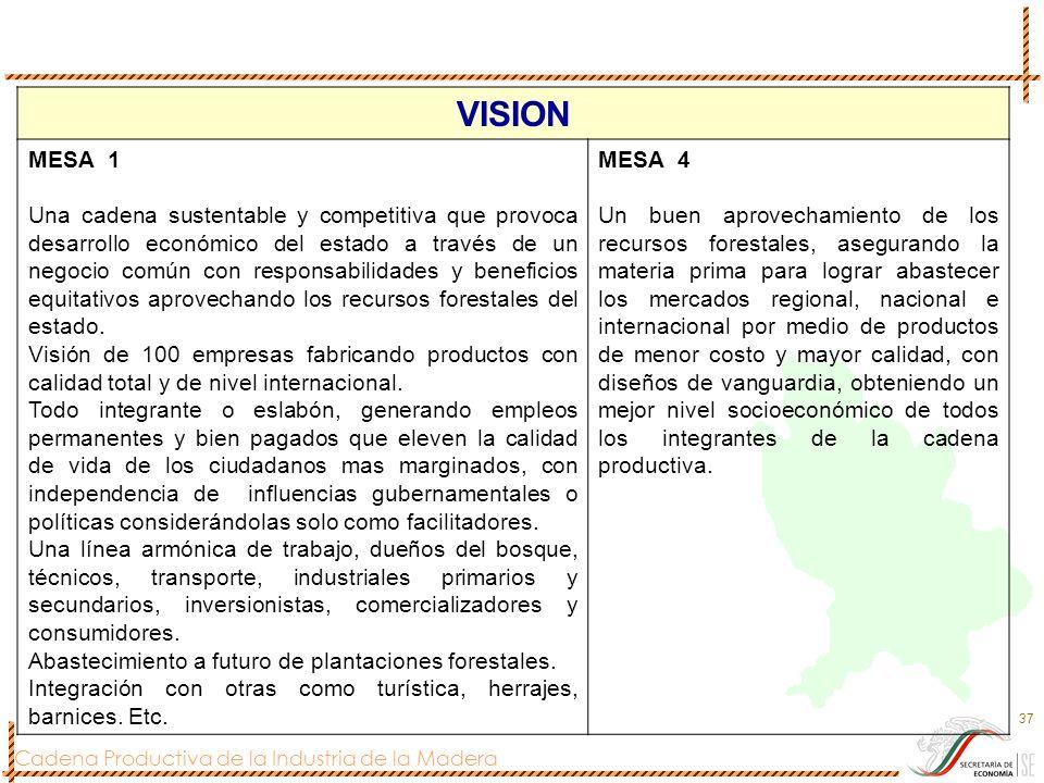 VISION MESA 1.
