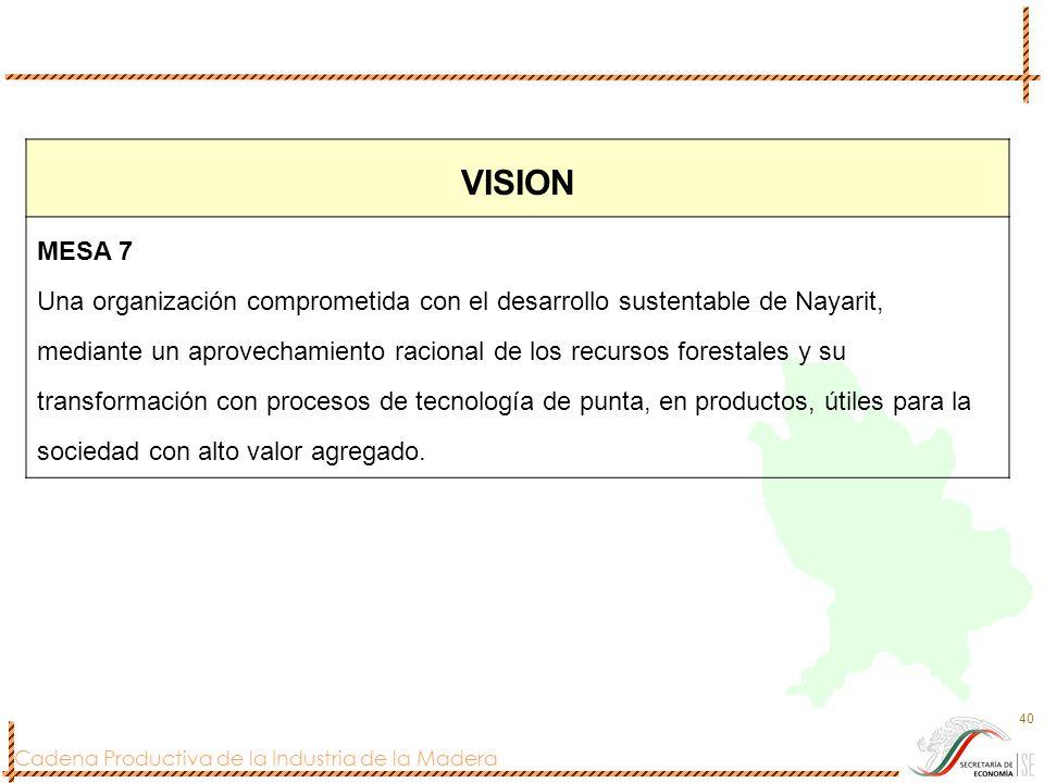 VISION MESA 7.