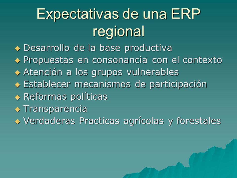 Expectativas de una ERP regional