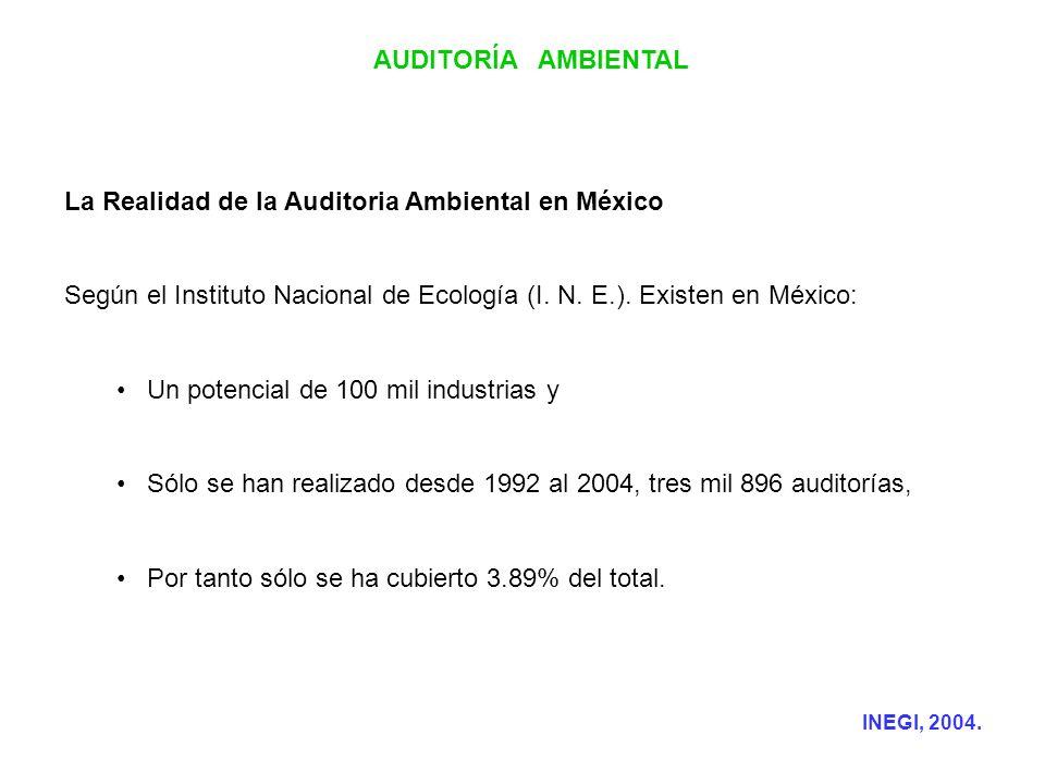 La Realidad de la Auditoria Ambiental en México