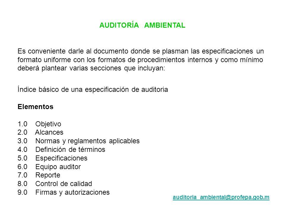 Índice básico de una especificación de auditoria Elementos