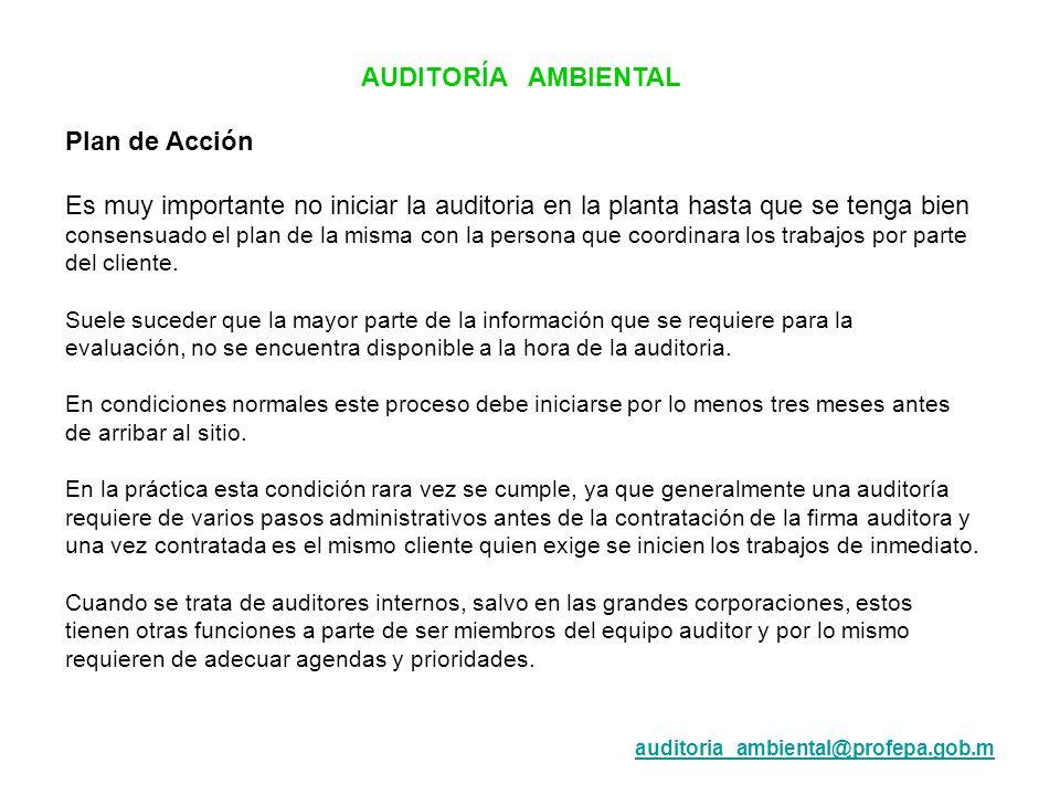 AUDITORÍA AMBIENTAL Plan de Acción