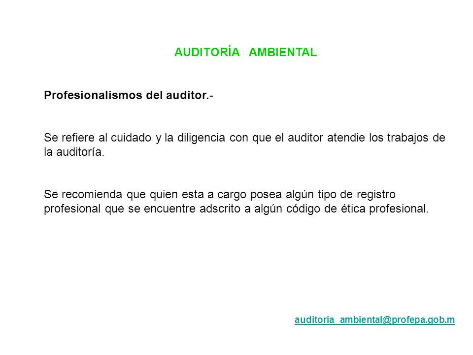 Profesionalismos del auditor.-