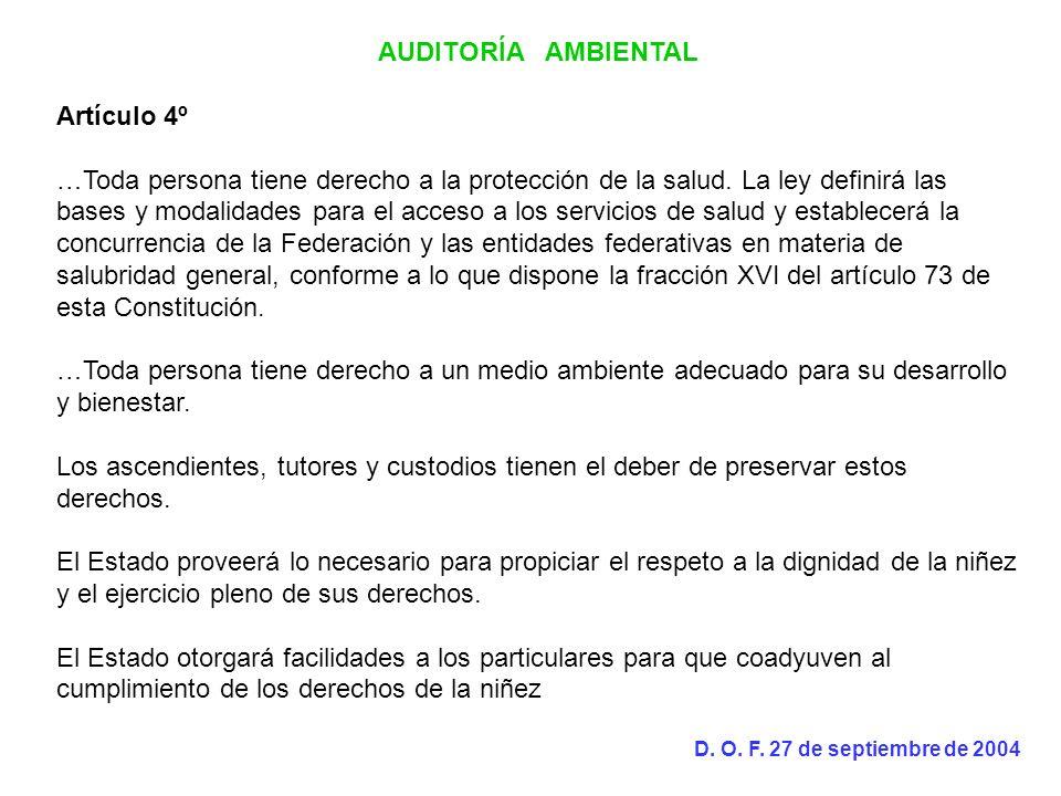 AUDITORÍA AMBIENTAL Artículo 4º