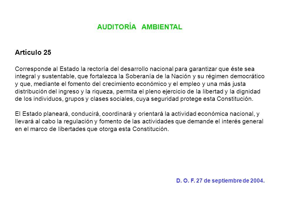 AUDITORÍA AMBIENTAL Artículo 25