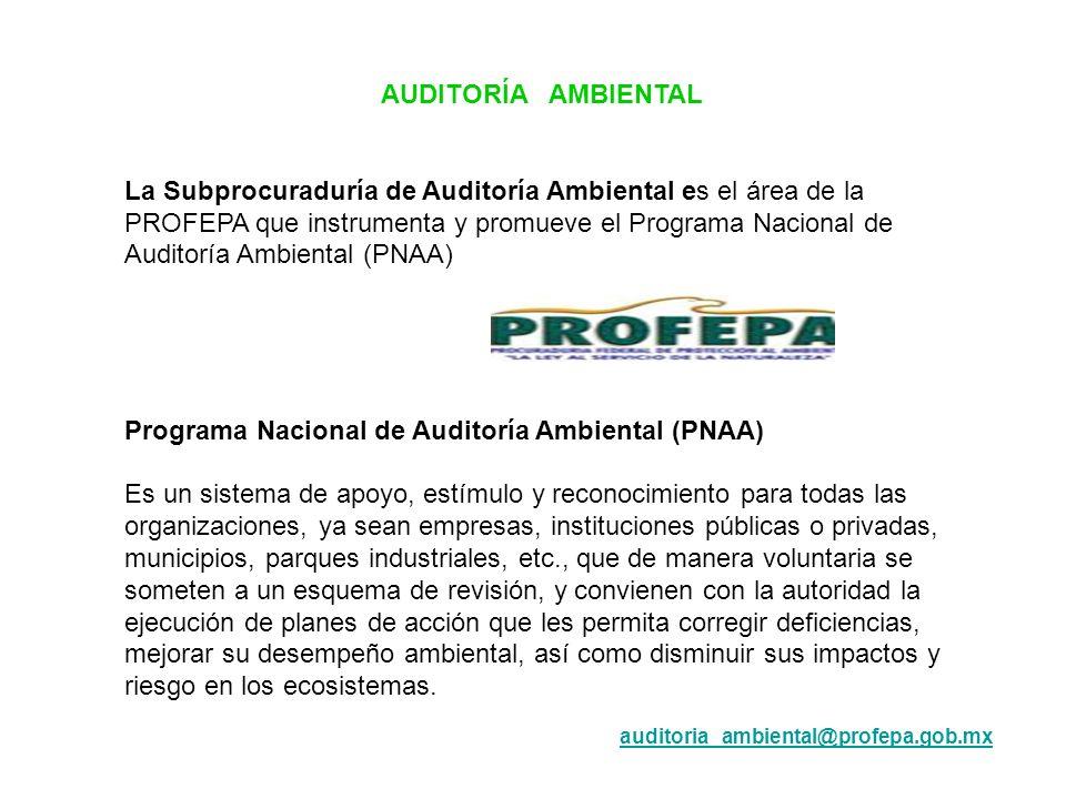Programa Nacional de Auditoría Ambiental (PNAA)