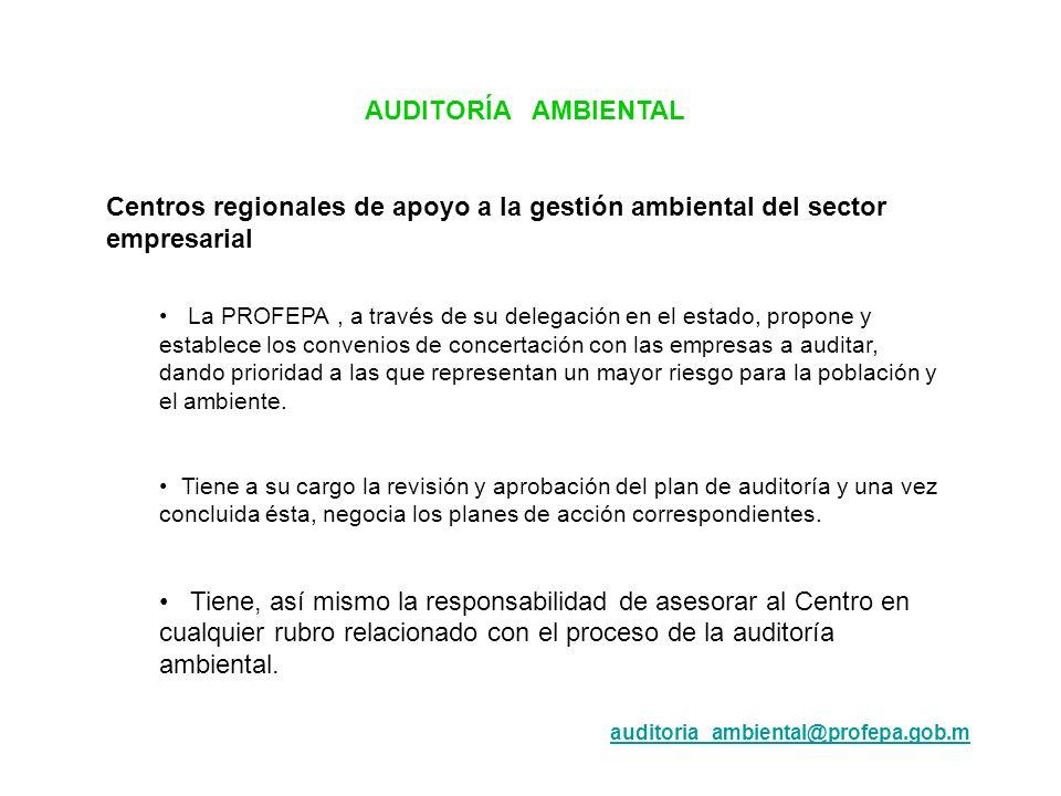 AUDITORÍA AMBIENTAL Centros regionales de apoyo a la gestión ambiental del sector empresarial.