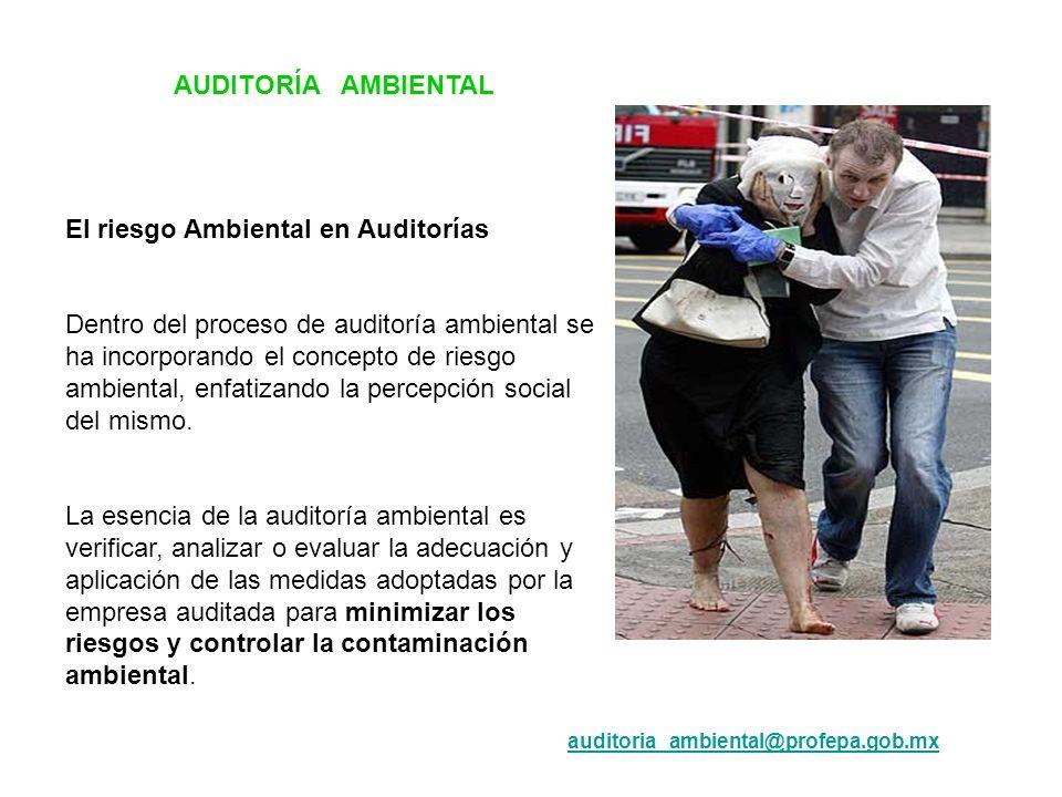 El riesgo Ambiental en Auditorías