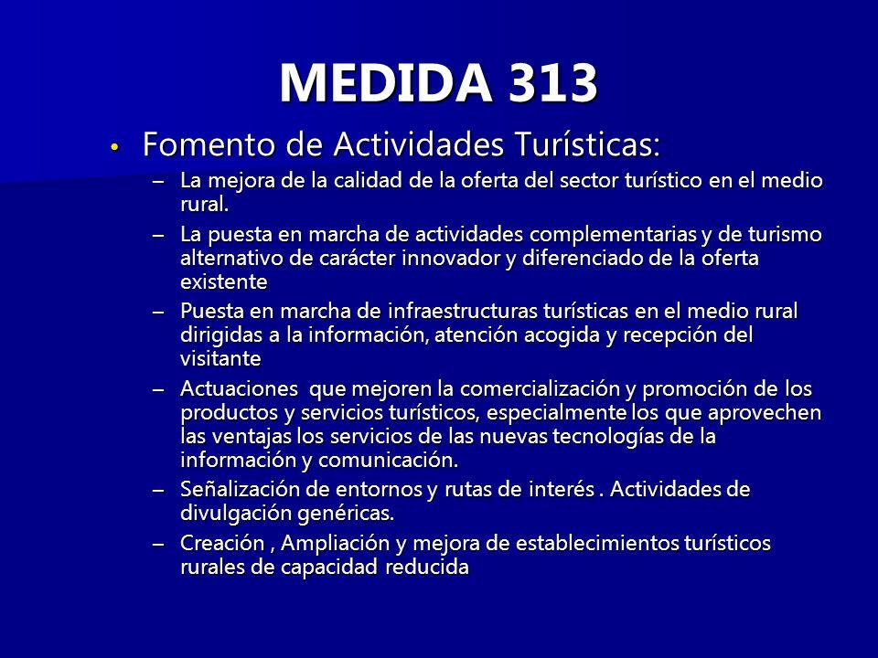 MEDIDA 313 Fomento de Actividades Turísticas: