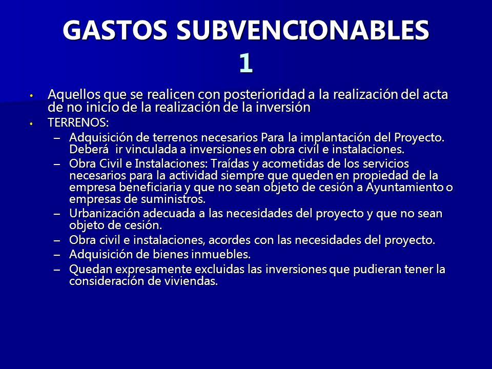 GASTOS SUBVENCIONABLES 1
