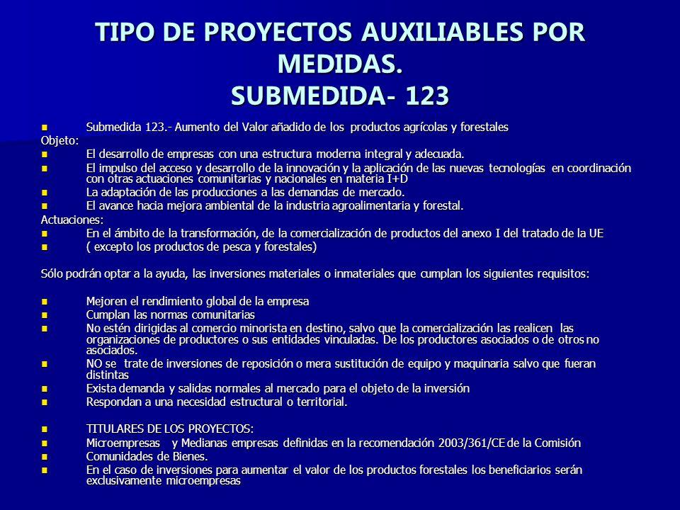 TIPO DE PROYECTOS AUXILIABLES POR MEDIDAS. SUBMEDIDA- 123