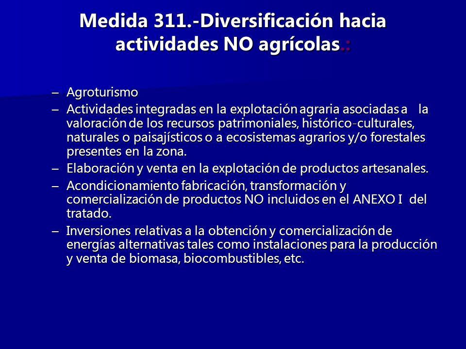 Medida 311.-Diversificación hacia actividades NO agrícolas.: