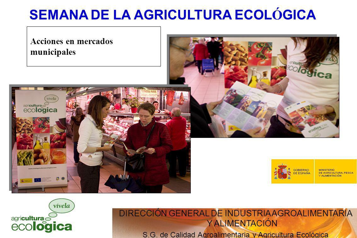 Acciones en mercados municipales