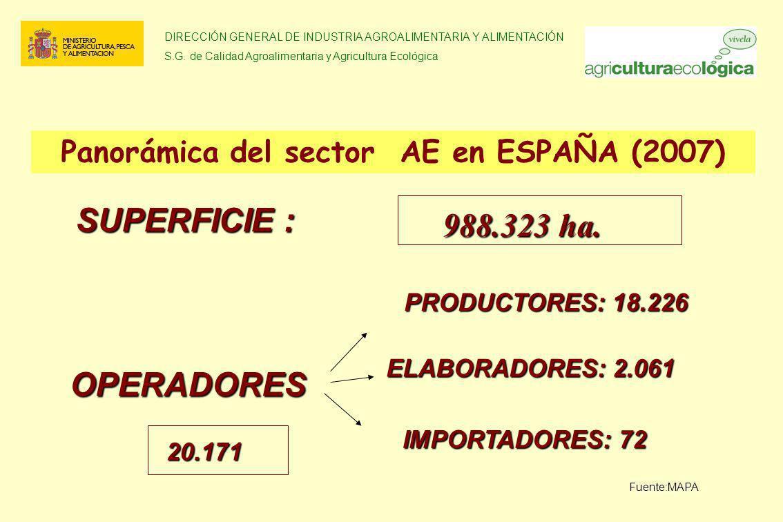 Panorámica del sector AE en ESPAÑA (2007)