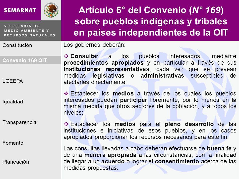 Artículo 6° del Convenio (N° 169) sobre pueblos indígenas y tribales en países independientes de la OIT