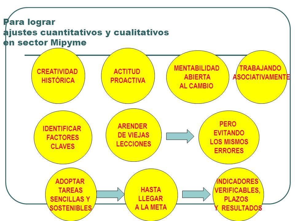 Para lograr ajustes cuantitativos y cualitativos en sector Mipyme