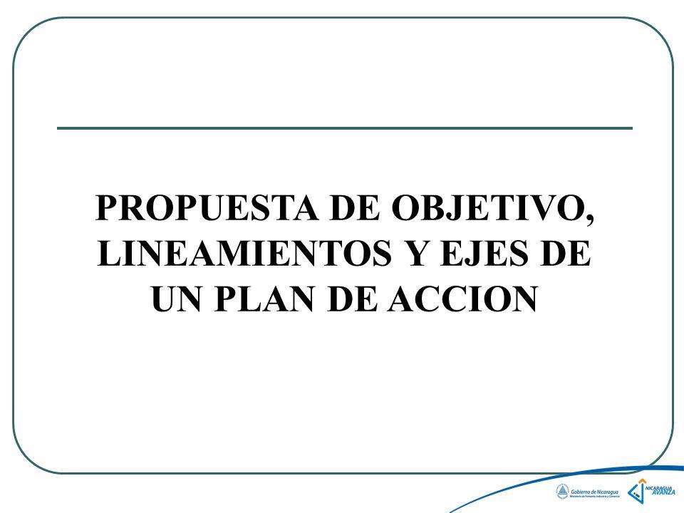 PROPUESTA DE OBJETIVO, LINEAMIENTOS Y EJES DE UN PLAN DE ACCION